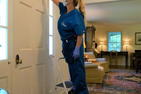 Mrs Clean Pittsburgh - Deep Clean Dusting